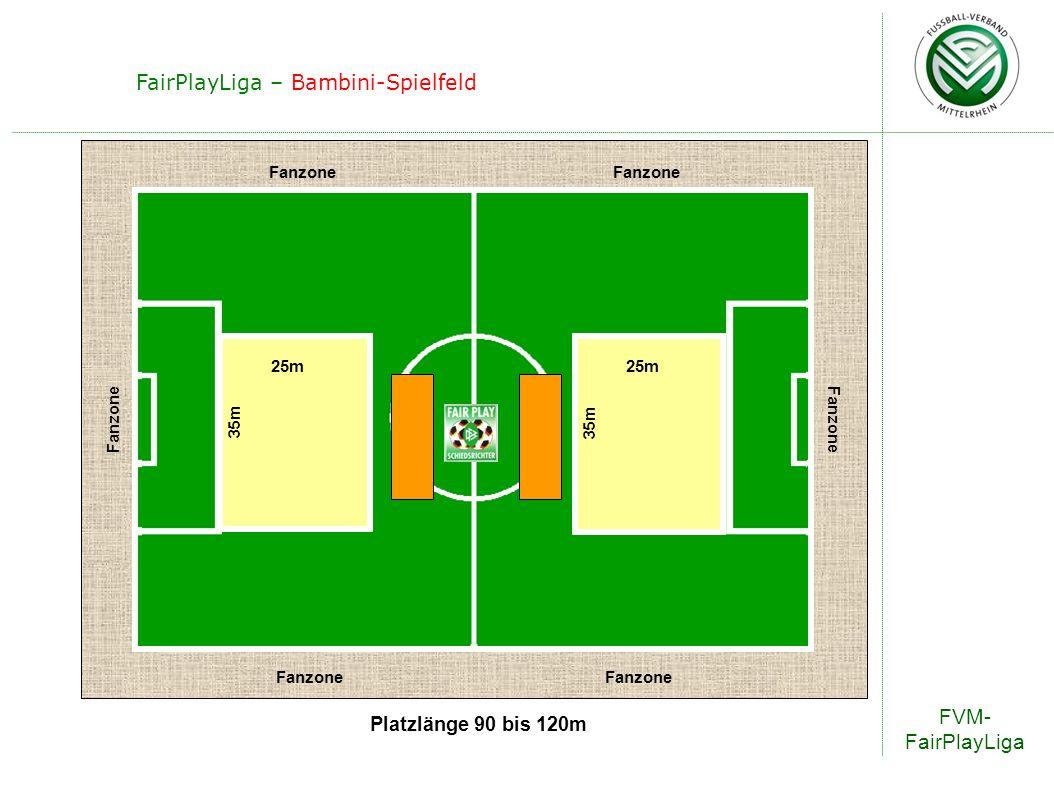 FairPlayLiga – Bambini-Spielfeld