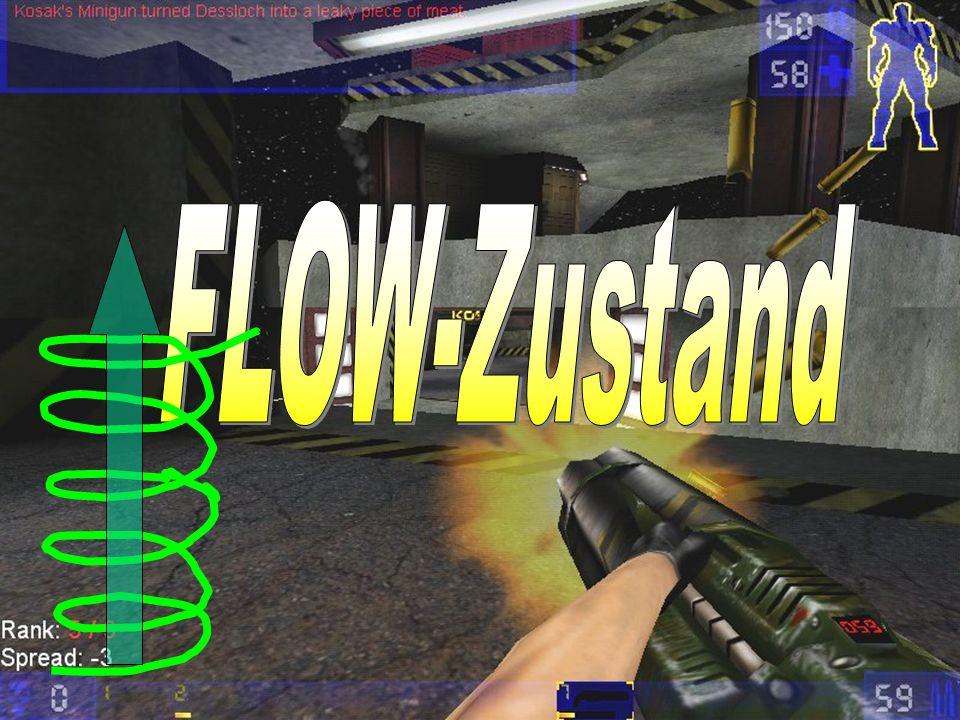 FLOW-Zustand