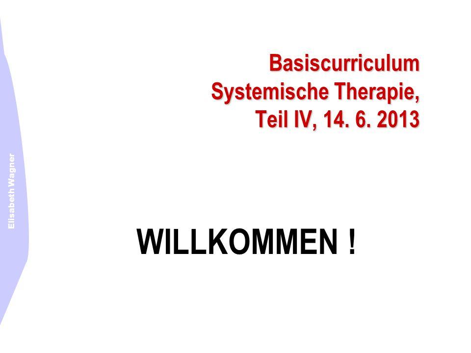 Basiscurriculum Systemische Therapie, Teil IV, 14. 6. 2013