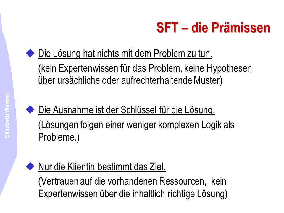 SFT – die Prämissen Die Lösung hat nichts mit dem Problem zu tun.