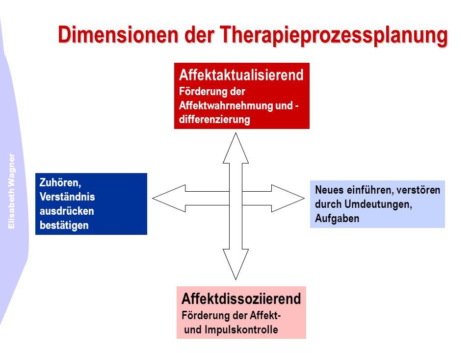 Dimensionen der Therapieprozessplanung
