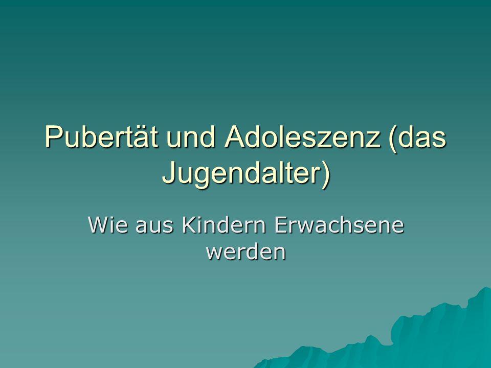 Pubertät und Adoleszenz (das Jugendalter)