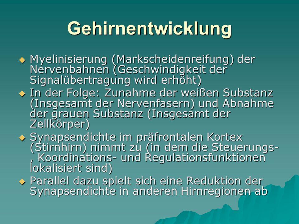 Gehirnentwicklung Myelinisierung (Markscheidenreifung) der Nervenbahnen (Geschwindigkeit der Signalübertragung wird erhöht)