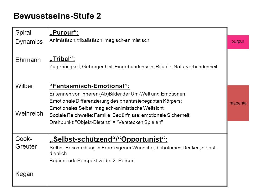 "Bewusstseins-Stufe 2 ""Selbst-schützend / Opportunist : Spiral Dynamics"