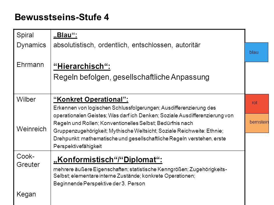 Bewusstseins-Stufe 4 Hierarchisch :