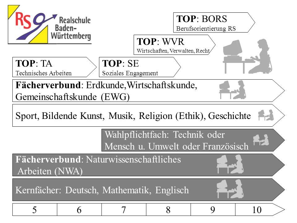 TOP: BORS Berufsorientierung RS