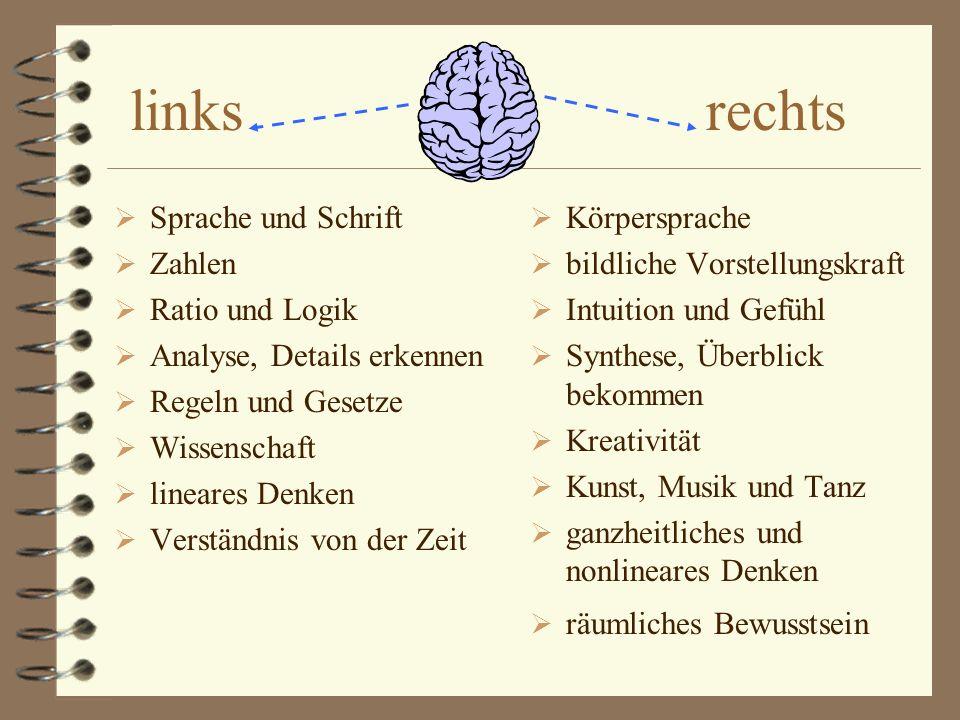 links rechts Sprache und Schrift Zahlen Ratio und Logik