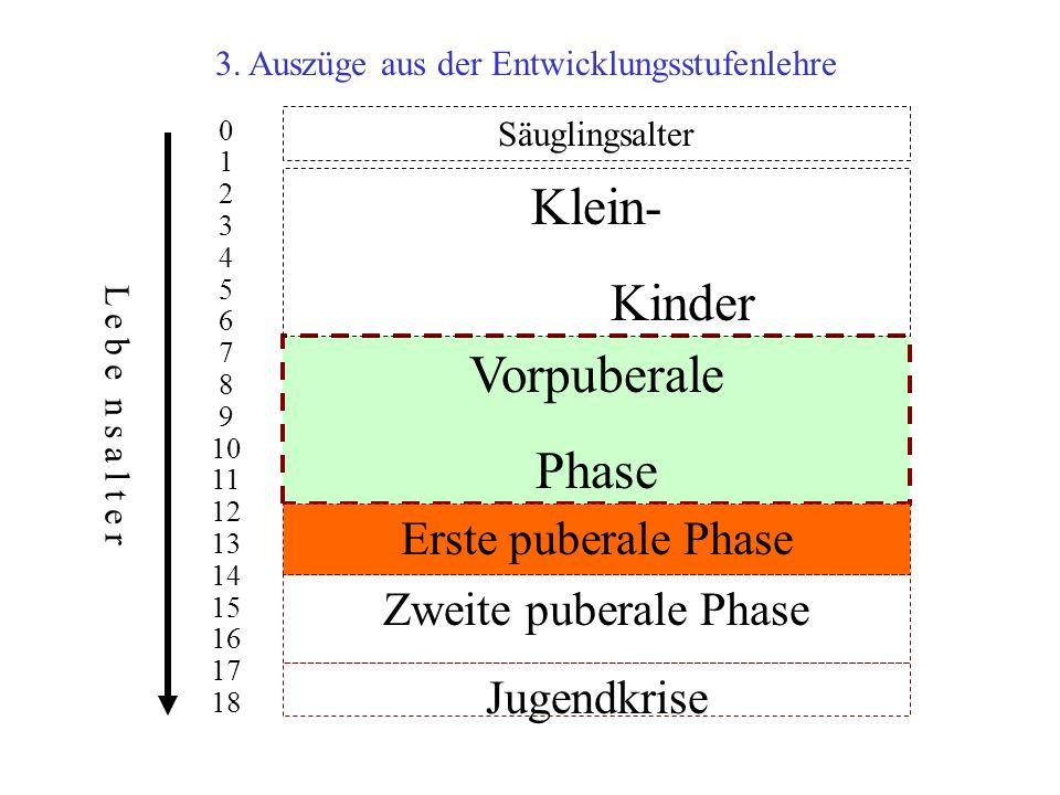 3. Auszüge aus der Entwicklungsstufenlehre