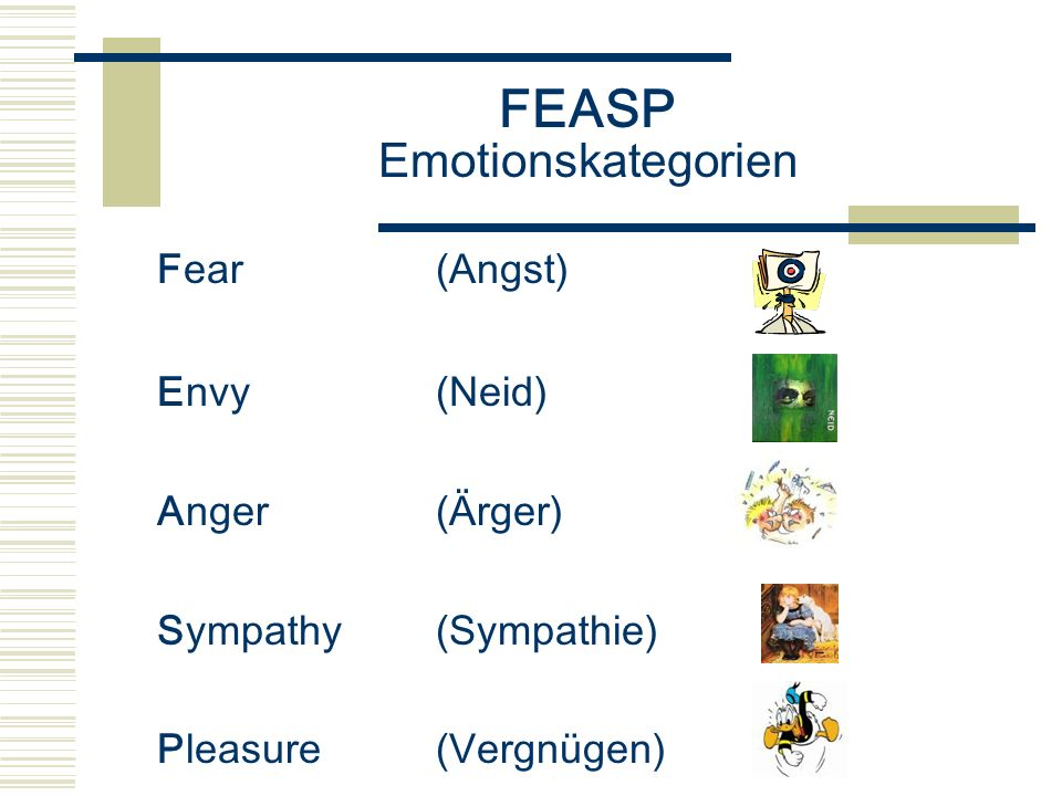 FEASP Emotionskategorien