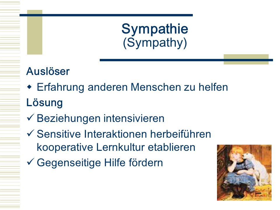 Sympathie (Sympathy) Auslöser Erfahrung anderen Menschen zu helfen