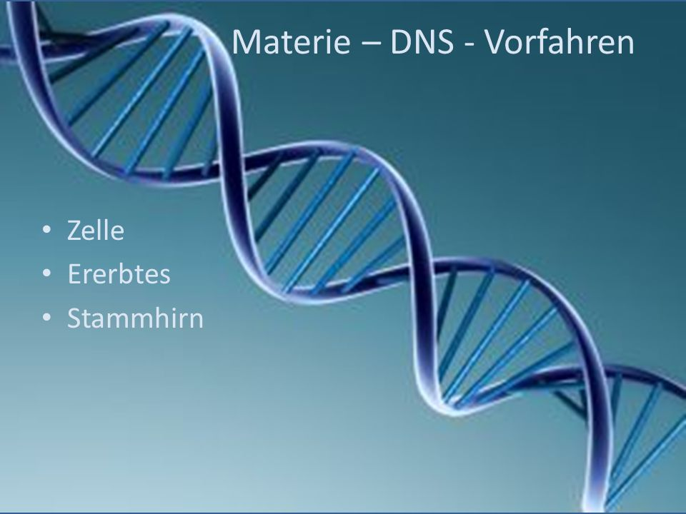 Materie – DNS - Vorfahren