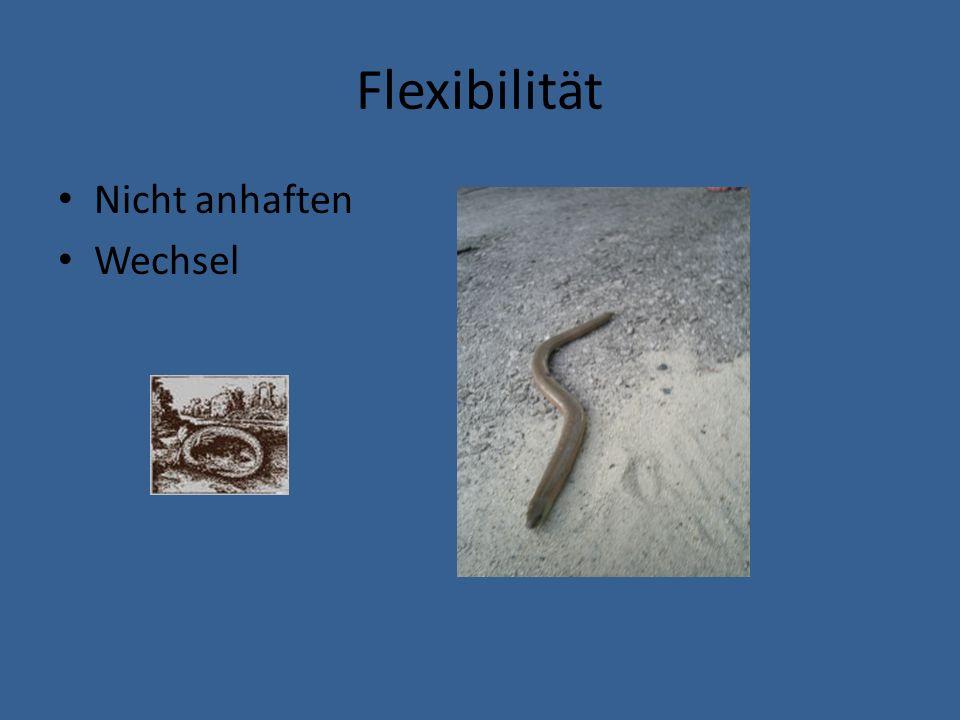 Flexibilität Nicht anhaften Wechsel