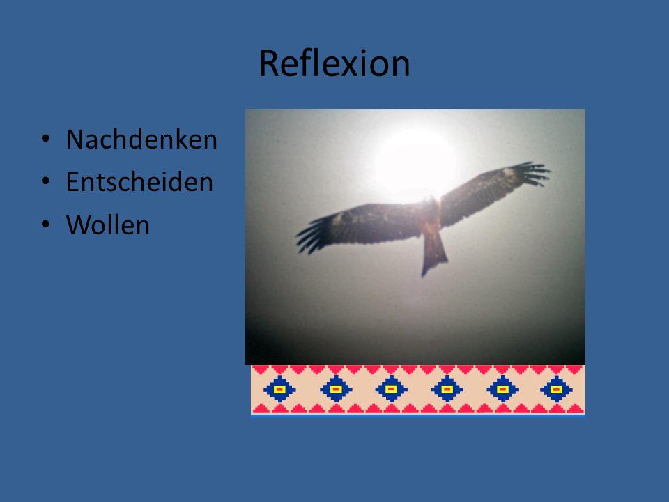 Reflexion Nachdenken Entscheiden Wollen