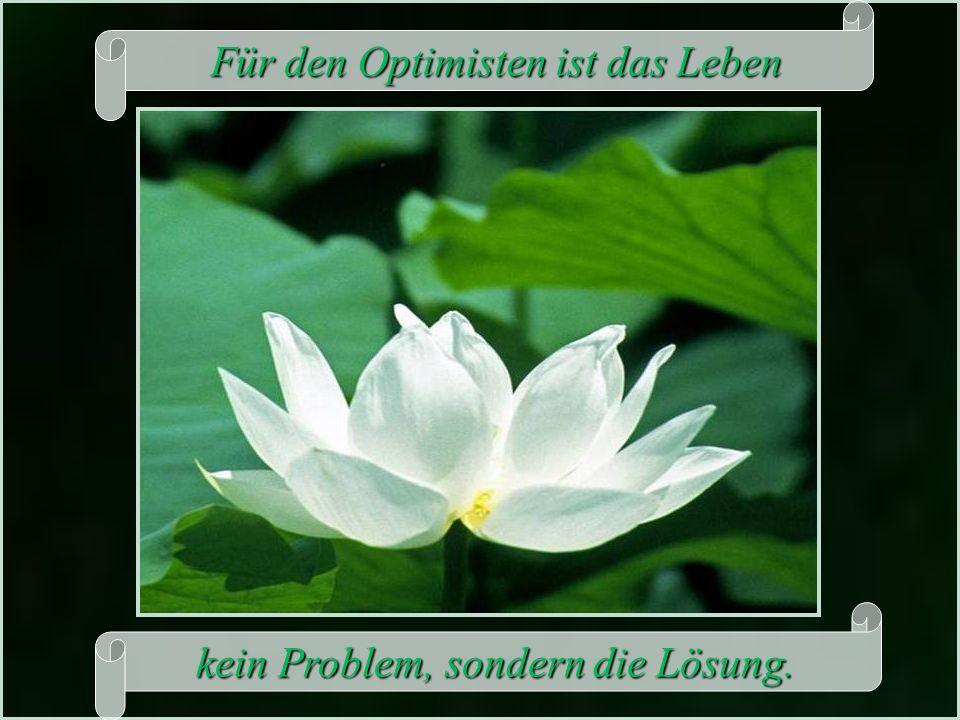 Für den Optimisten ist das Leben