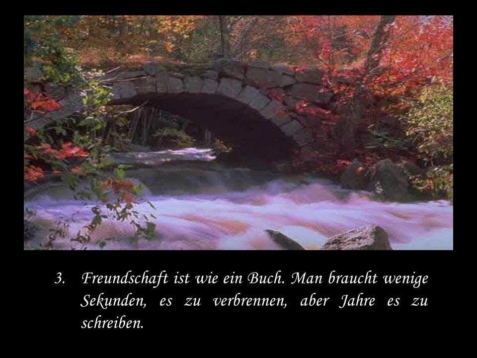 Freundschaft ist wie ein Buch