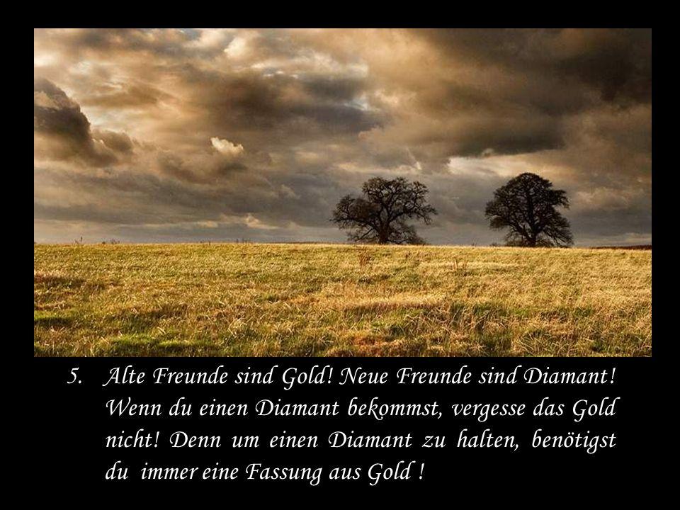 Alte Freunde sind Gold. Neue Freunde sind Diamant
