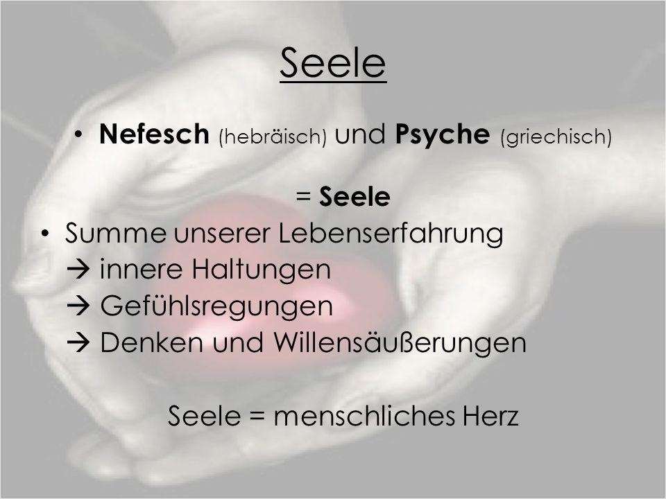 Seele Nefesch (hebräisch) und Psyche (griechisch)