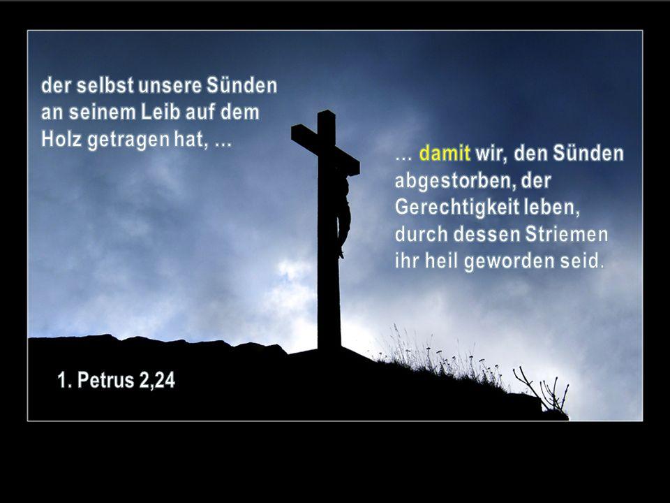 der selbst unsere Sünden an seinem Leib auf dem Holz getragen hat, …