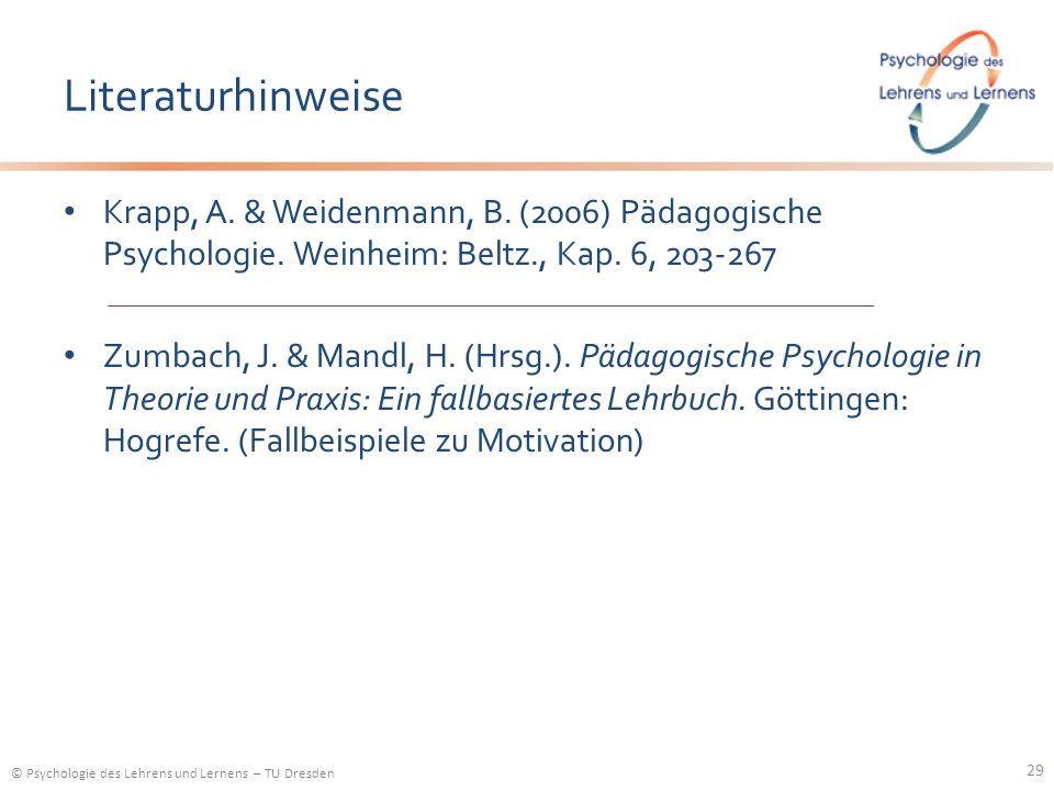 Literaturhinweise Krapp, A. & Weidenmann, B. (2006) Pädagogische Psychologie. Weinheim: Beltz., Kap. 6, 203-267.