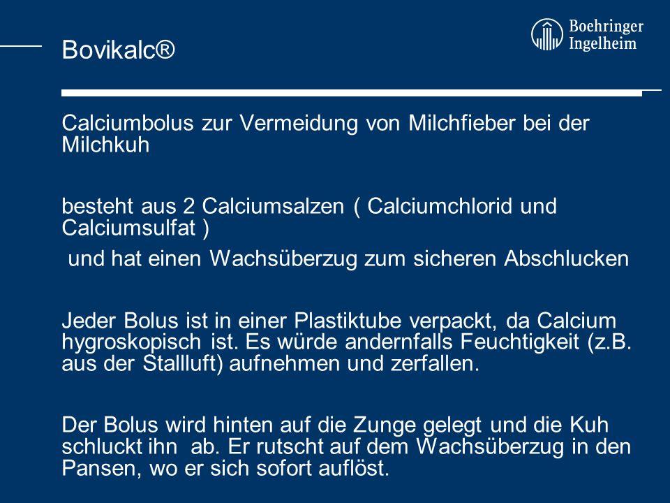 Bovikalc® Calciumbolus zur Vermeidung von Milchfieber bei der Milchkuh