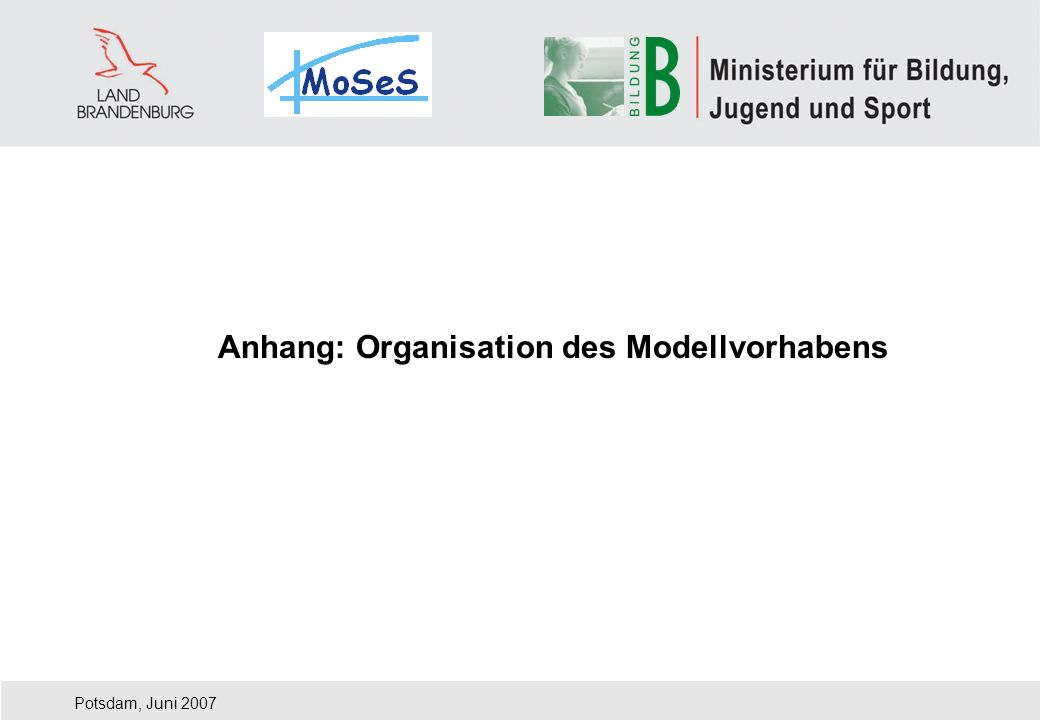 Anhang: Organisation des Modellvorhabens
