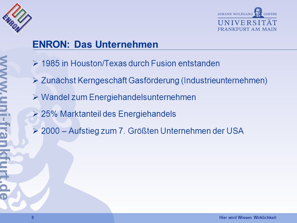ENRON: Das Unternehmen