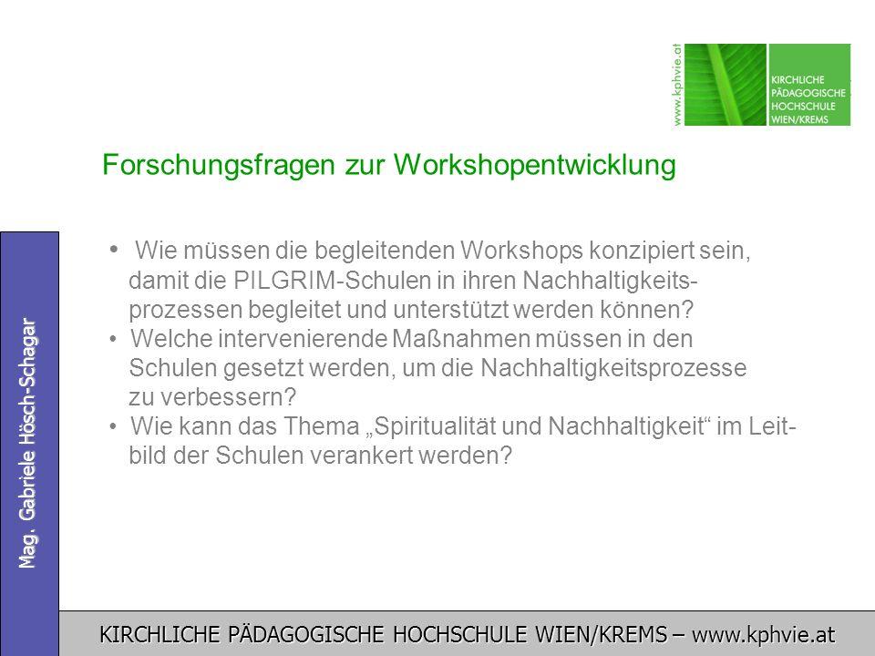 Forschungsfragen zur Workshopentwicklung