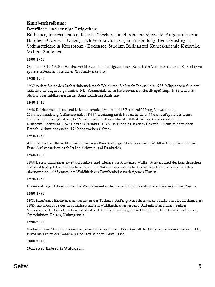 Seite: Kurzbeschreibung: Berufliche und sonstige Tätigkeiten: