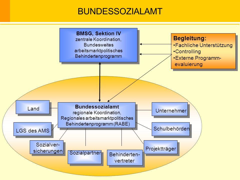 BUNDESSOZIALAMT Begleitung: BMSG, Sektion IV Fachliche Unterstützung