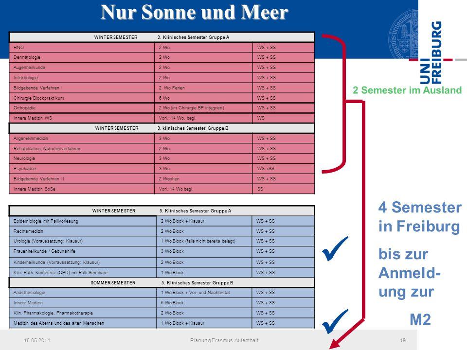   Nur Sonne und Meer 4 Semester in Freiburg bis zur Anmeld-ung zur