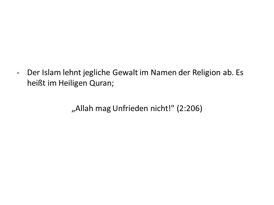Der Islam lehnt jegliche Gewalt im Namen der Religion ab