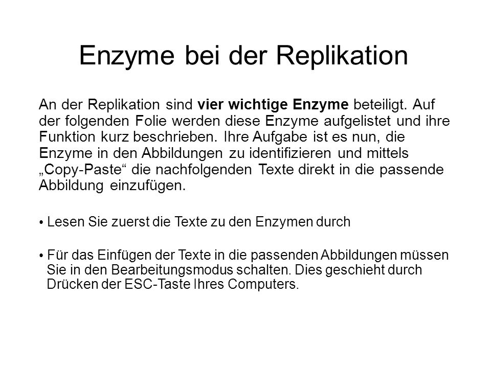 Enzyme bei der Replikation