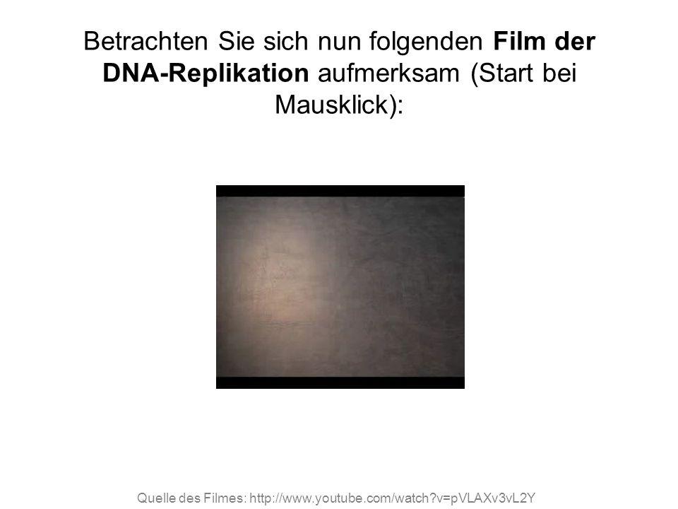 Betrachten Sie sich nun folgenden Film der DNA-Replikation aufmerksam (Start bei Mausklick):