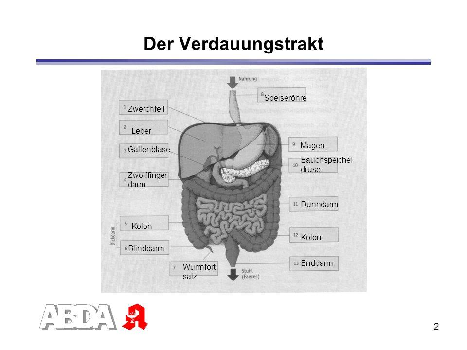 ABDA-Referat: Trotz Asthma richtig durchatmen