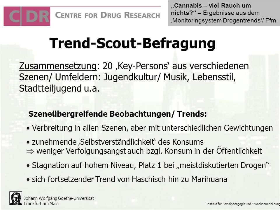 Trend-Scout-Befragung