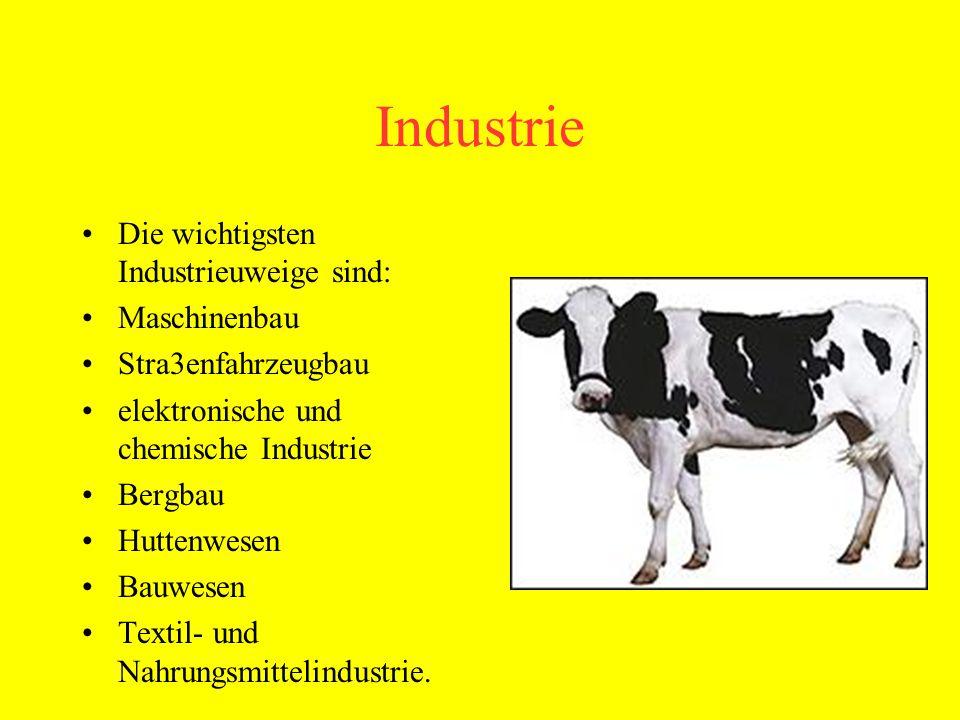 Industrie Die wichtigsten Industrieuweige sind: Maschinenbau