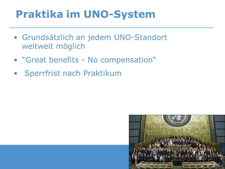 Praktika im UNO-System