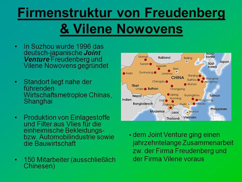 Firmenstruktur von Freudenberg & Vilene Nowovens