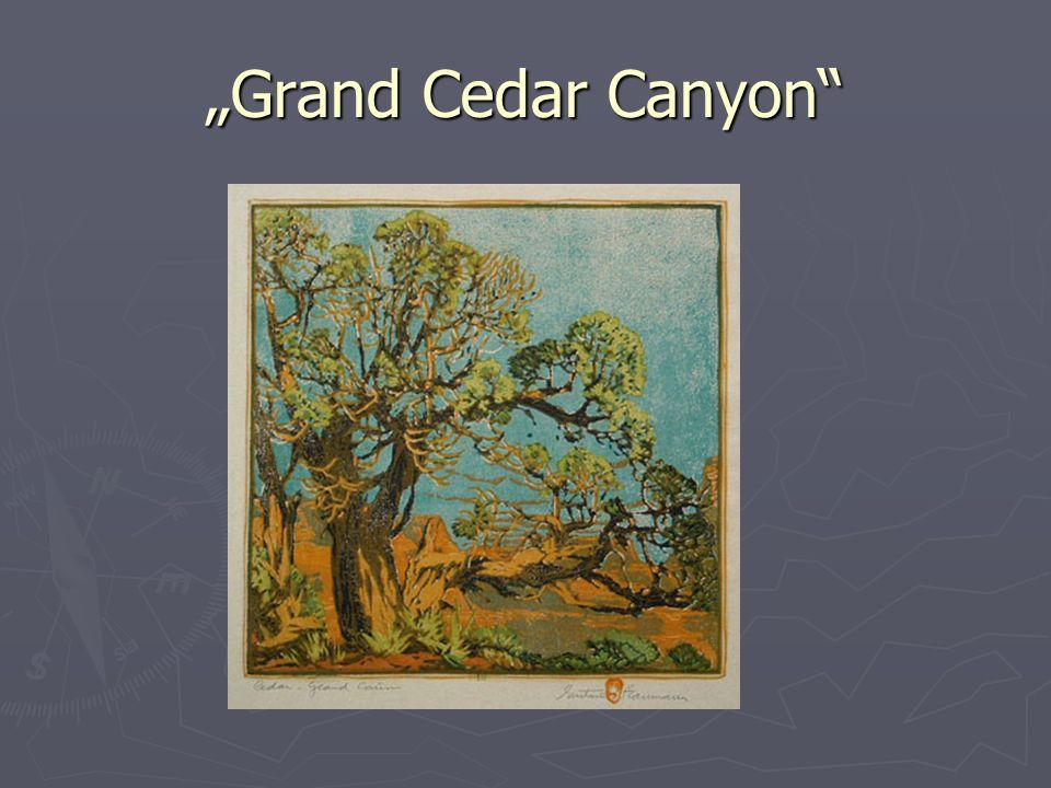 """""""Grand Cedar Canyon"""