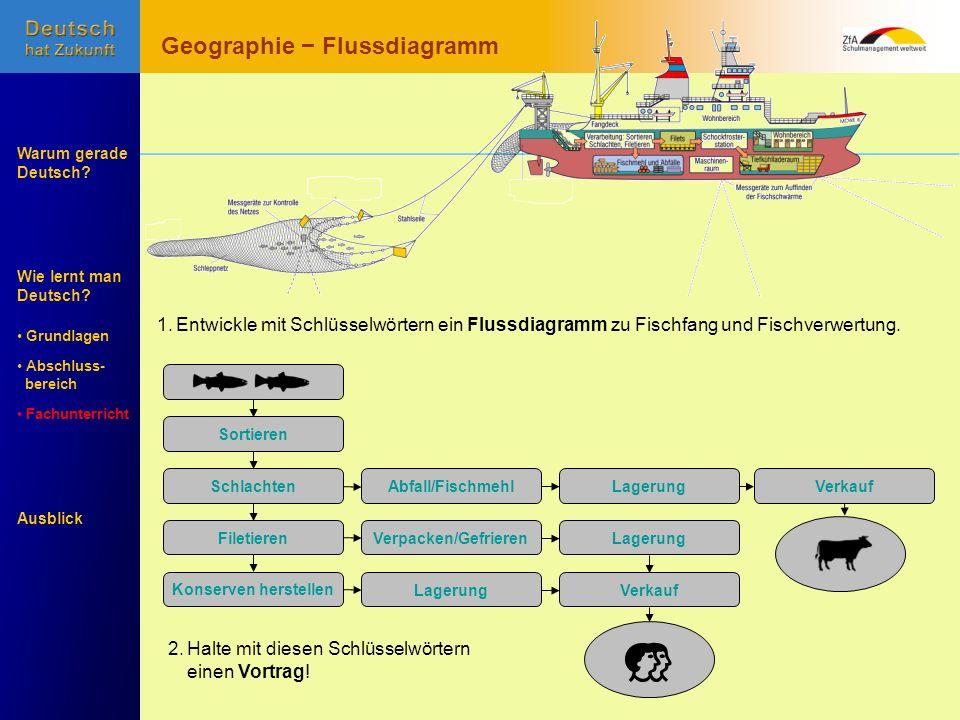 Geographie − Flussdiagramm