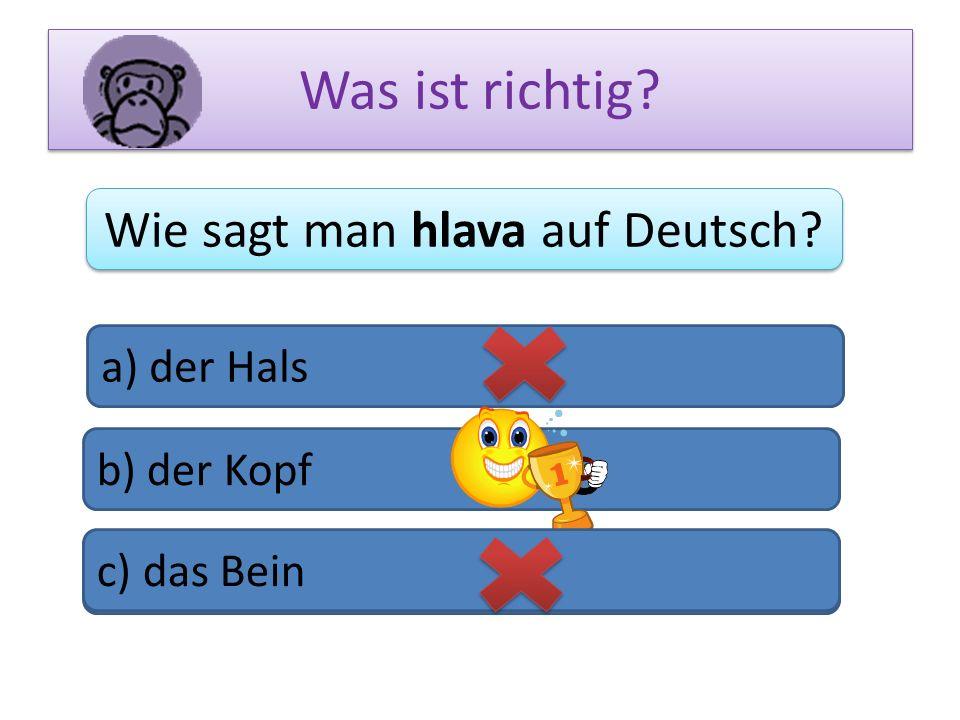 Wie sagt man hlava auf Deutsch