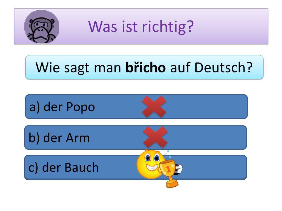 Wie sagt man břicho auf Deutsch