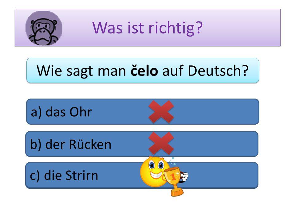 Wie sagt man čelo auf Deutsch