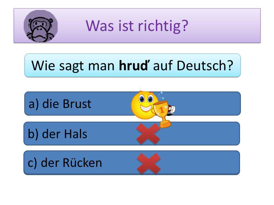 Wie sagt man hruď auf Deutsch