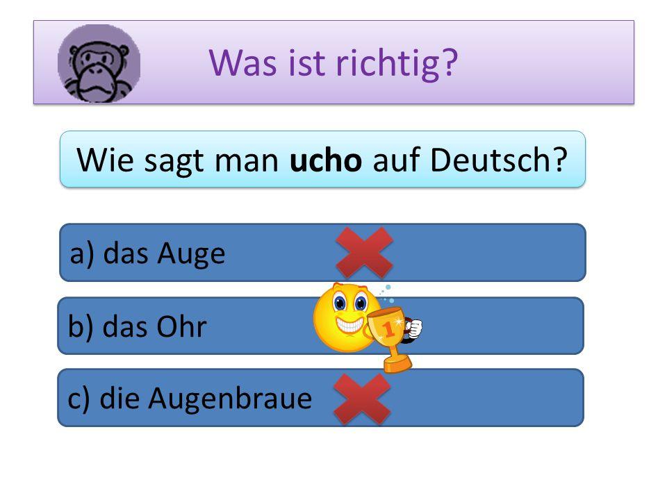 Wie sagt man ucho auf Deutsch