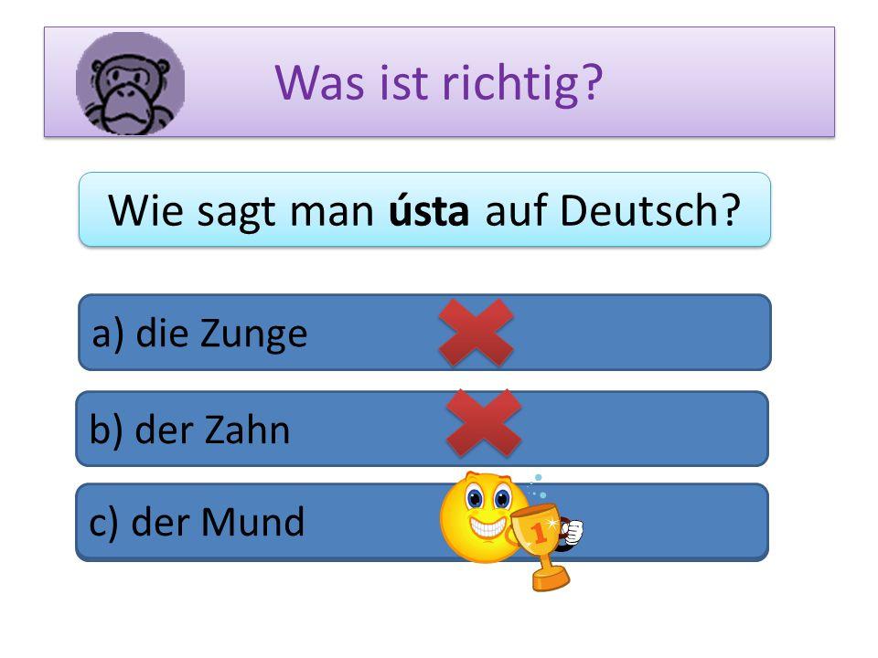 Wie sagt man ústa auf Deutsch