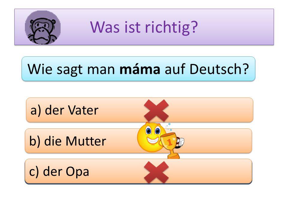Wie sagt man máma auf Deutsch