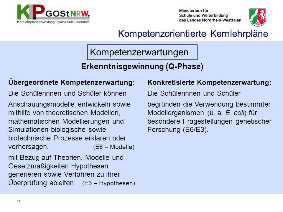 Erkenntnisgewinnung (Q-Phase)