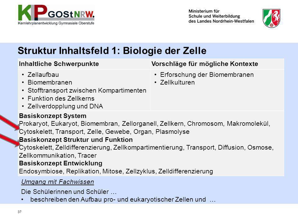 Struktur Inhaltsfeld 1: Biologie der Zelle