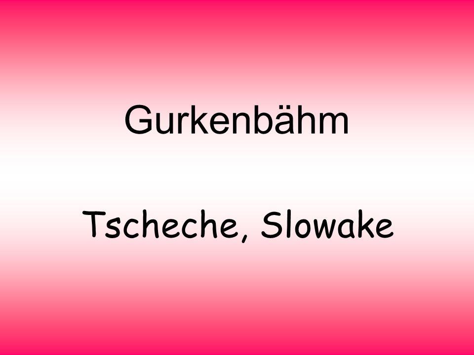 Gurkenbähm Tscheche, Slowake